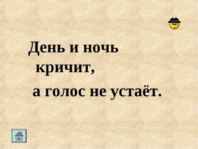 День и ночь кричит, а голос не устаёт.