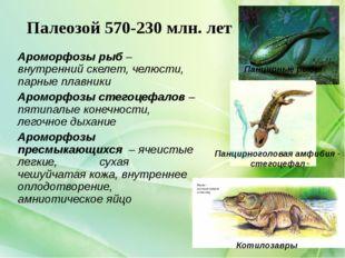 Палеозой 570-230 млн. лет Ароморфозы рыб – внутренний скелет, челюсти, парные