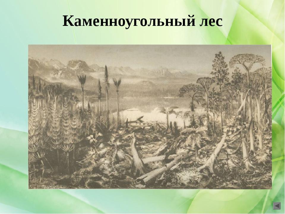 Ответы: 1. 3,5 млрд. лет назад 2. гетеротрофы 3. архейская 4. фотосинтез 5. п...