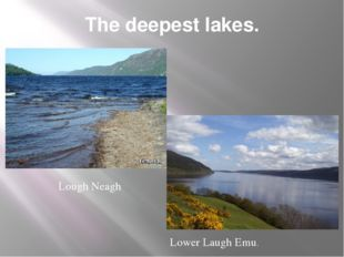 The deepest lakes. Lough Neagh Lower Laugh Emu.