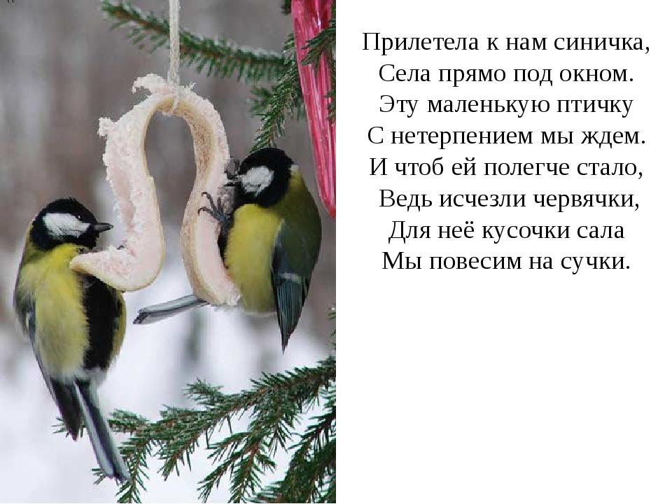 """Урок русского языка на тему """"написание сочетаний чк,чн""""."""