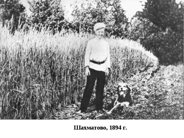 Шахматово, 1894 г.