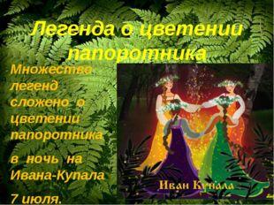Легенда о цветении папоротника Множество легенд сложено о цветении папоротник
