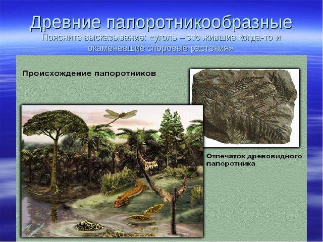 Древние папоротникообразные Поясните высказывание: «уголь – это жившие когда-...