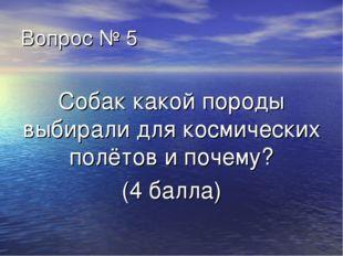 Вопрос № 5 Собак какой породы выбирали для космических полётов и почему? (4 б