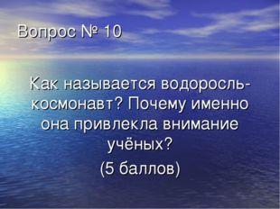 Вопрос № 10 Как называется водоросль-космонавт? Почему именно она привлекла в