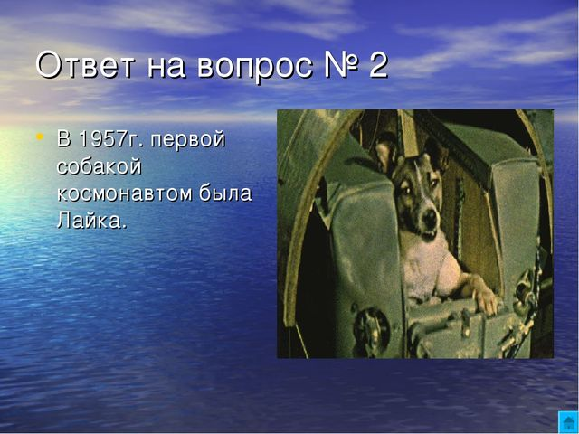 Ответ на вопрос № 2 В 1957г. первой собакой космонавтом была Лайка.