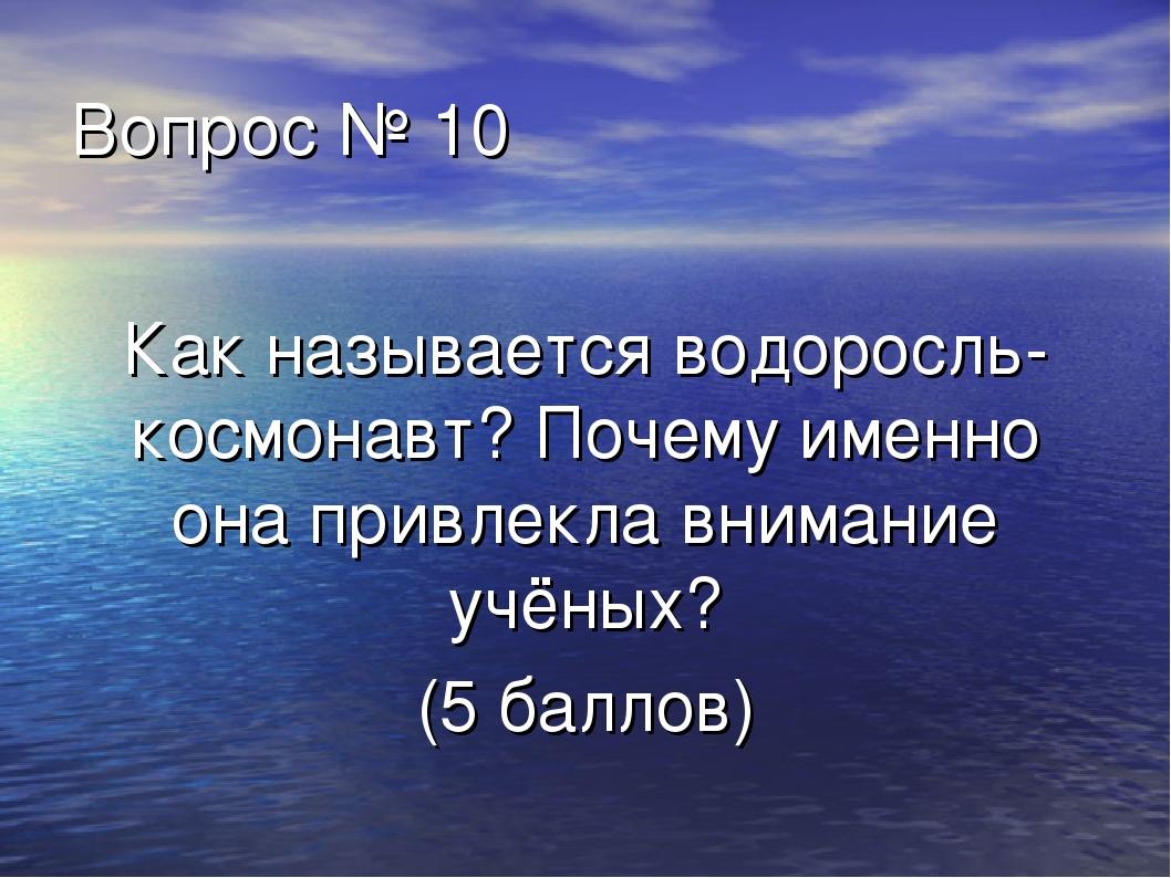Вопрос № 10 Как называется водоросль-космонавт? Почему именно она привлекла в...