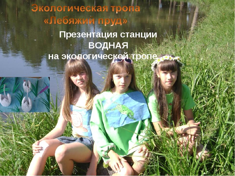Презентация станции ВОДНАЯ на экологической тропе