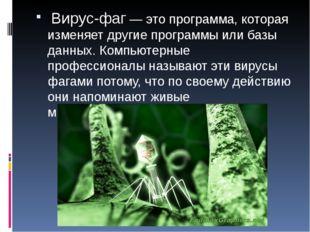 Вирус-фаг — это программа, которая изменяет другие программы или базы данных