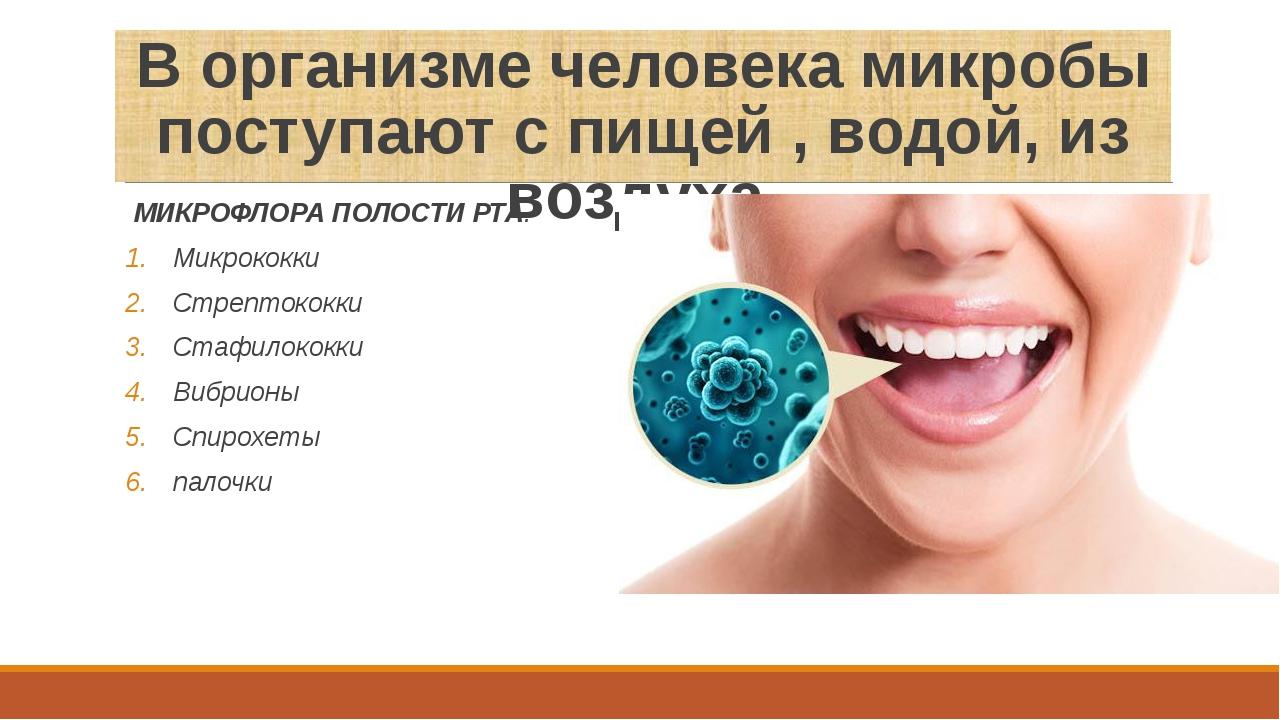 В организме человека микробы поступают с пищей , водой, из воздуха. МИКРОФЛОР...