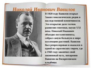 Николай Иванович Вавилов В 1920 году Вавилов открыл Закон гомологических рядо