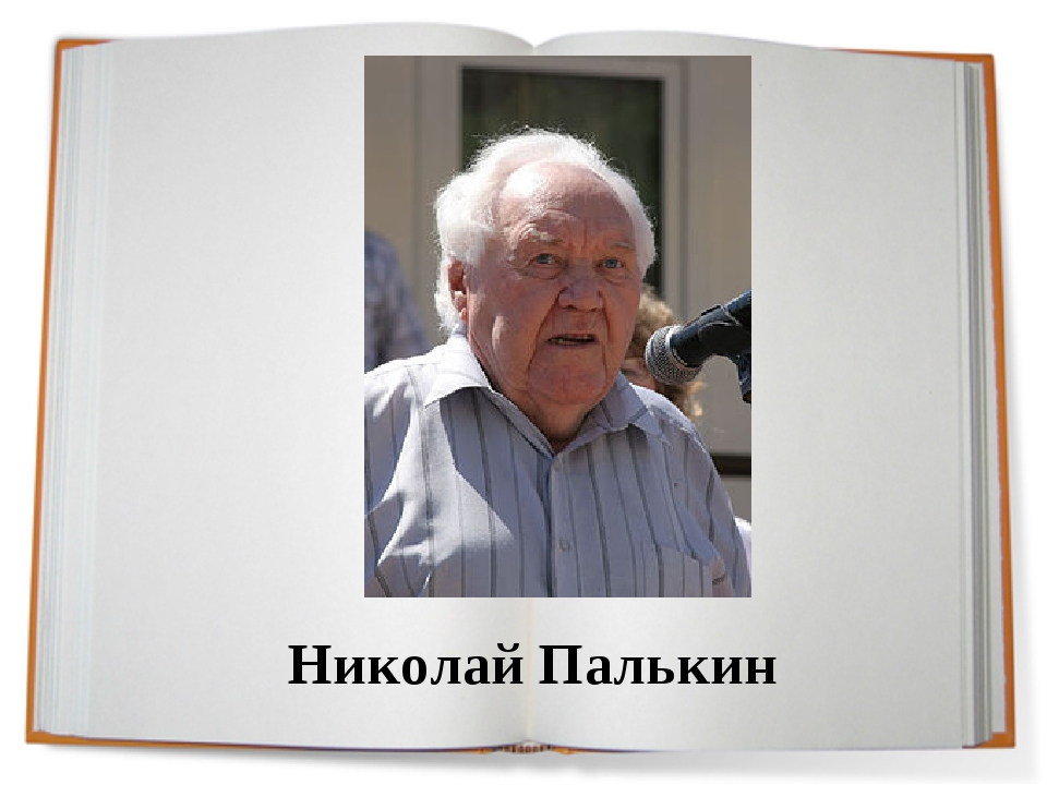 Николай Палькин