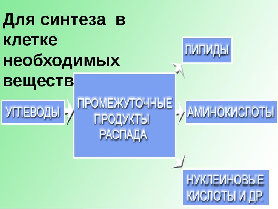 Для синтеза в клетке необходимых веществ