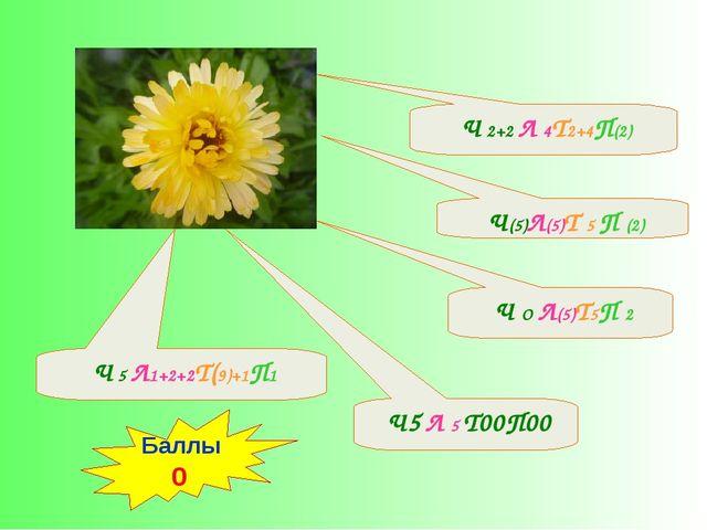 Ч(5)Л(5)Т 5 П (2) Ч5 Л 5 Т00П00 Ч 5 Л1+2+2Т(9)+1П1 Ч О Л(5)Т5П 2 Ч 2+2 Л 4Т2...