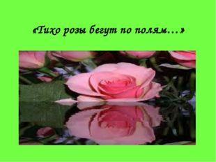 «Тихо розы бегут по полям…»