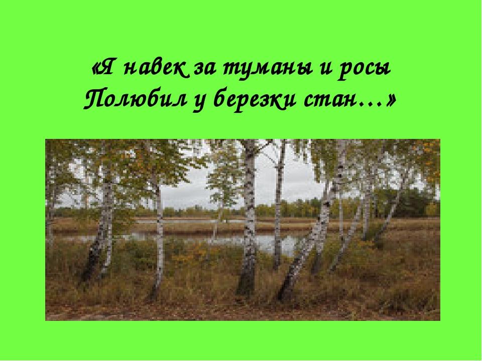 «Я навек за туманы и росы Полюбил у березки стан…»