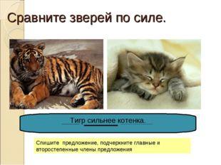 Сравните зверей по силе. Тигр сильнее котенка. Спишите предложение, подчеркни