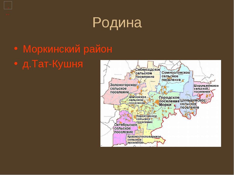 Родина Моркинский район д.Тат-Кушня