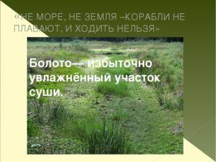 «НЕ МОРЕ, НЕ ЗЕМЛЯ –КОРАБЛИ НЕ ПЛАВАЮТ, И ХОДИТЬ НЕЛЬЗЯ» Болото— избыточно ув