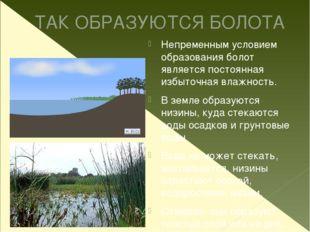ТАК ОБРАЗУЮТСЯ БОЛОТА Непременным условием образования болот является постоян