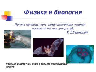 Физика и биология Логика природы есть самая доступная и самая полезная логик