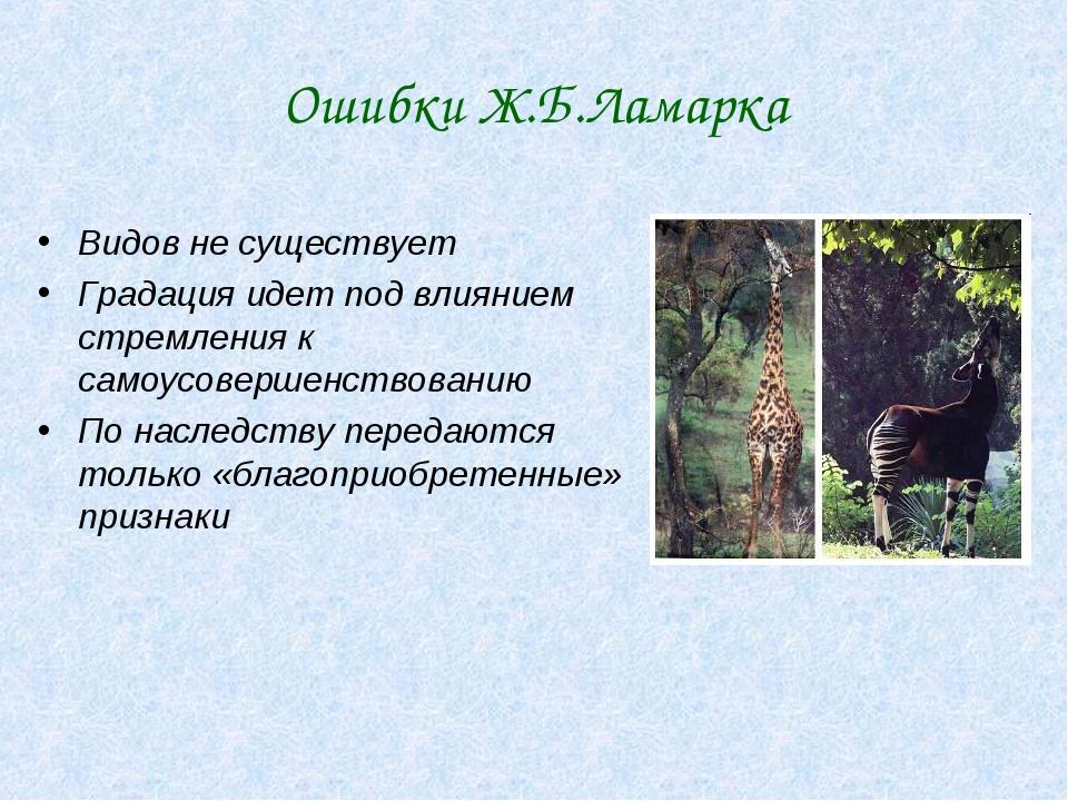 Ошибки Ж.Б.Ламарка Видов не существует Градация идет под влиянием стремления...