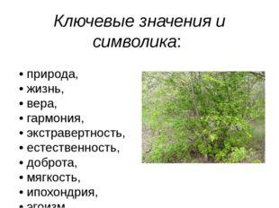 Ключевые значения и символика: • природа, • жизнь, • вера, • гармония, • экст