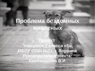 Проблема бездомных животных Проект Учащихся 2 класса «Б» МБОУ СОШ №71 г. Воро