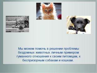 Мы можем помочь в решении проблемы бездомных животных личным примером гуманн