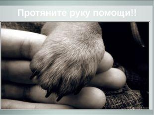 Протяните руку помощи!!