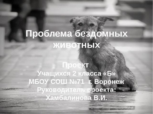 Проблема бездомных животных Проект Учащихся 2 класса «Б» МБОУ СОШ №71 г. Воро...
