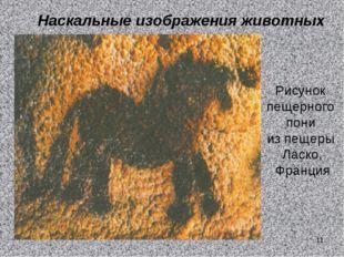 Наскальные изображения животных Рисунок пещерного пони из пещеры Ласко, Франц