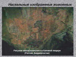 Наскальные изображения животных Рисунки эпохи палеолита в Каповой пещере (Рос