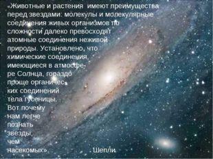 «Животные и растения имеют преимущества перед звездами: молекулы и молекулярн