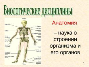 Анатомия – наука о строении организма и его органов *