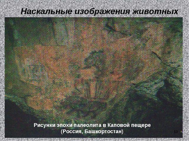 Наскальные изображения животных Рисунки эпохи палеолита в Каповой пещере (Рос...