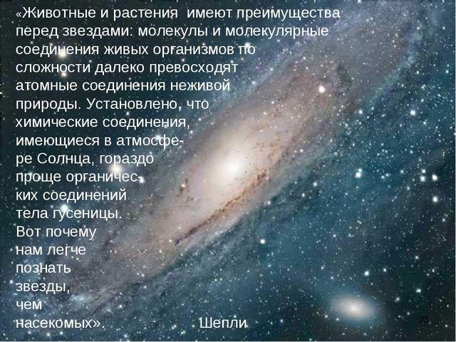 «Животные и растения имеют преимущества перед звездами: молекулы и молекулярн...