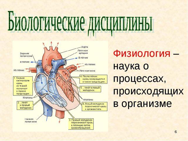 Физиология – наука о процессах, происходящих в организме *