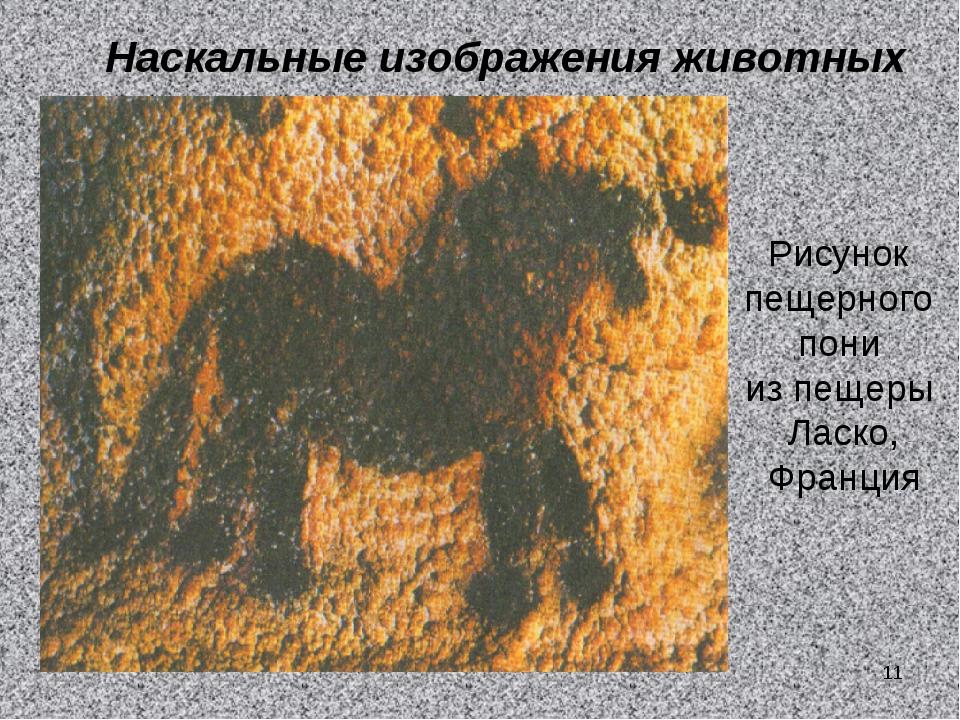 Наскальные изображения животных Рисунок пещерного пони из пещеры Ласко, Франц...