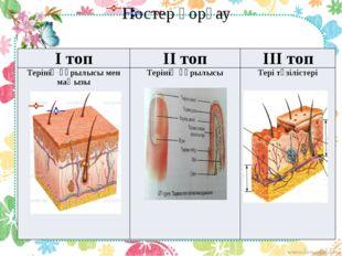 Постер қорғау Ітоп ІІтоп ІІІтоп Терінің құрылысы мен маңызы Терініңқұрылысы Т