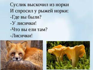 Суслик выскочил из норки И спросил у рыжей норки: -Где вы были? -У лисички!