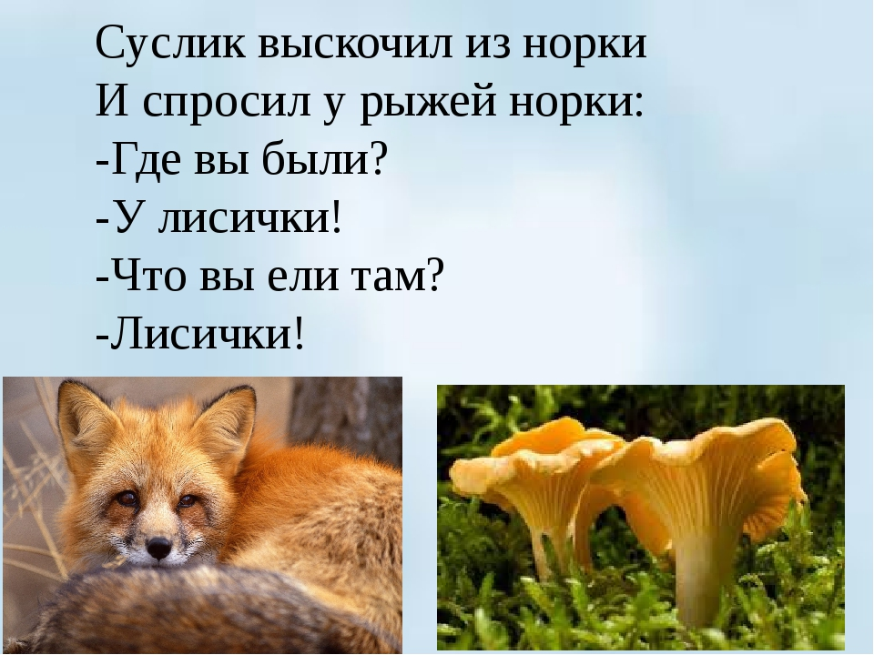 Суслик выскочил из норки И спросил у рыжей норки: -Где вы были? -У лисички!...