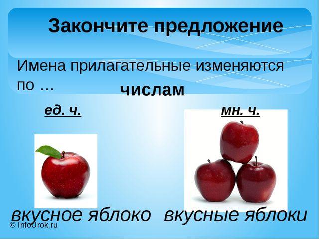 © InfoUrok.ru Имена прилагательные изменяются по … Закончите предложение числ...