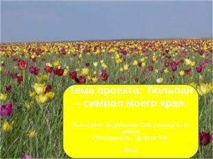 Тема проекта: Тюльпан – символ моего края. Выполнила: Анджигаева Оля, учениц