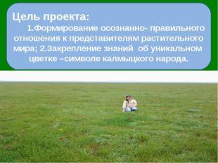 Цель проекта: 1.Формирование осознанно- правильного отношения к представител