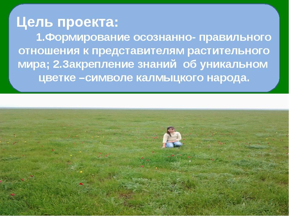 Цель проекта: 1.Формирование осознанно- правильного отношения к представител...