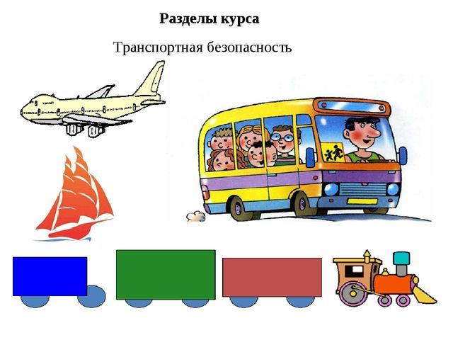 Разделы курса Транспортная безопасность