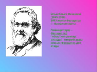 Илья Ильич Мечников (1845-1916) 1883 жылы Фагоцитоз құбылысын ашты Лейкоцитте