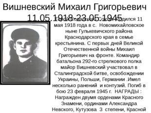 Вишневский Михаил Григорьевич 11.05.1918-23.05.1945 Герой Советского Союза. Р